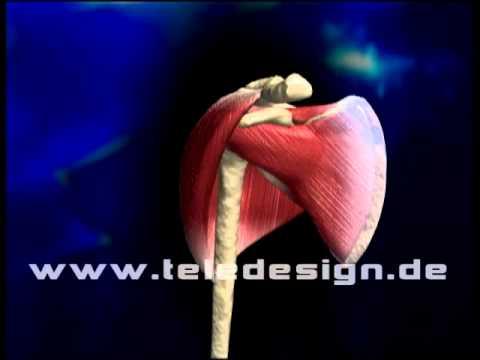 Entzündung der Gelenke Schmerzen Volksmittel zu lindern