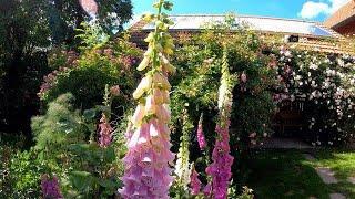 Rosengarten von Andrea Heckmann in Scheidegg