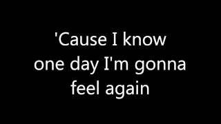 Taio Cruz - Feel Again (lyrics on screen)