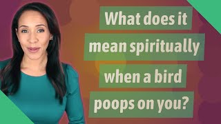 What does it mean spiritually when a bird poops on you?