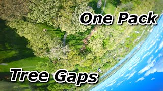 One Pack Tree Gaps - FPV Freestyle