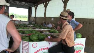 Produce Auction In Lancaster County