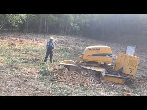Preview video Timelapse - Fresaceppi Vermeer SC60TX
