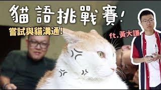 【黃阿瑪的後宮生活】貓語挑戰賽!嘗試與貓溝通!ft.黃大謙
