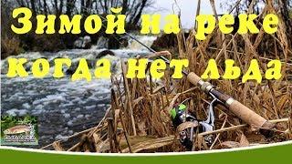 Все про рыбалка ленинградская область свежие