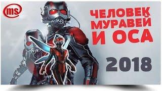 Человек муравей и Оса (2018) -  когда выйдет фильм