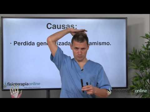 Rectificación o envaramiento cervical, ¿qué es? - Fisioterapia Bilbao