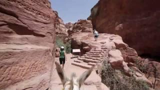 preview picture of video 'J5 - bonus : Montée de El Deir en âne'