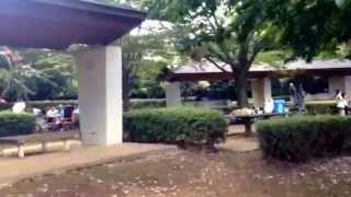 増尾城址総合公園のイメージ