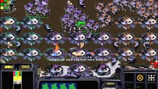 스타크래프트 유즈맵 드라군 천부대 막기 1000부대 막기! 하하 (starcraft Use Map Setting Dragoon Defence)