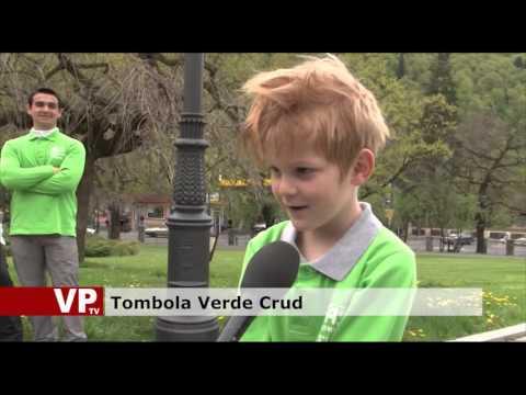 Tombola Verde Crud