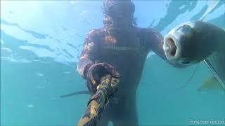 """Замануха, """"маруська"""", """"дурка"""" для рыбы. от компании МагазинCalipso dive shop - видео 1"""