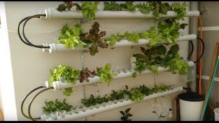 Horta hidropônica vertical - atualização