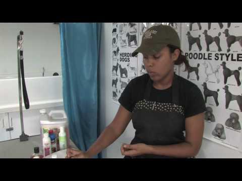 Eczema in un trattamento di bocca