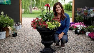 Container Inspiration // Garden Answer
