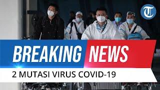 Pemerintah Temukan Dua Kasus Mutasi Virus Corona Asal Inggris di Indonesia