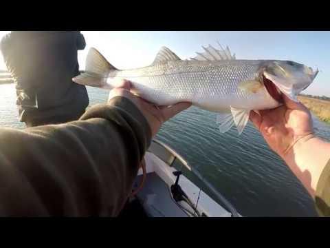 YouTube che pesca su un galleggiante
