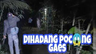 Jalur Krepi Yg Sering Nongol Kunti Gaes