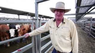 Mount Gambier Prime Market Review by Ray White Keatley - 11th February 2015
