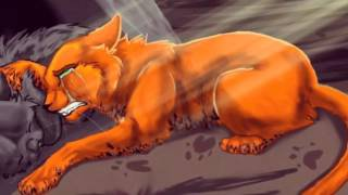 Смерть котов воителей по мелодию