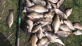 Болтушка для рыбалки на карася