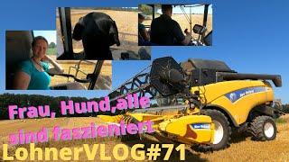 LohnerVLOG#71 Die letzte Gerste fällt I New Holland CX 8050 I Fendt 724 und Kröger Kipper fährt ab