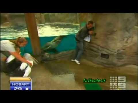 La pesca su Volga per scaricare il video
