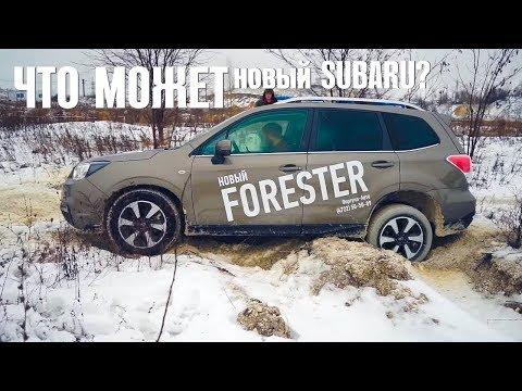Subaru  Forester Паркетник класса J - тест-драйв 4