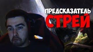 СТРЕЙ ВАНГА / МЕНЯ УНИЖАЮТ В МИДУ / Лучшее со Stray228 #84