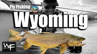 W4F - Fly Fishing Wyoming