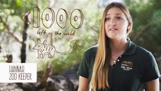 Help Us Save Numbats