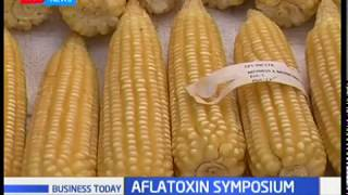 Kenyans at a risk of being affected by the deadly aflatoxin due to its availability in Kenyan soils