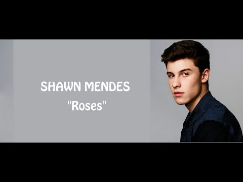 Shawn Mendes - Roses (lyrics)
