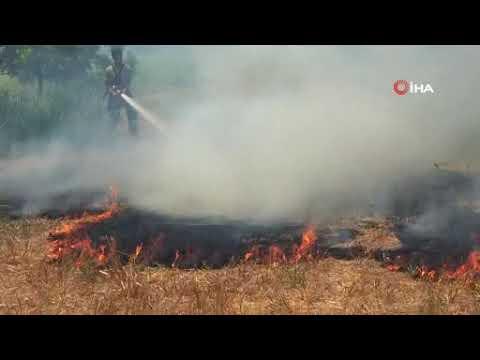 Manavgat'ta yangın paniği