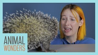 Tessa Violet Smells Our Animals