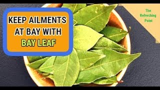 Bay Leaf Benefits for Health, Skin & Hair - Also Helps Keep Ailments Away