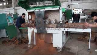 preview picture of video 'Shunde RUIMA Plank Multi-rip Saw Machine MJ-3016 with cutting rosewood of Africa'