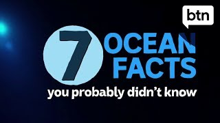 7 Amazing Ocean Facts You Didn't Know