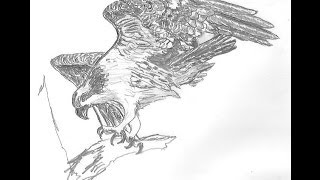 Carving The Wing For A Bird Of Prey