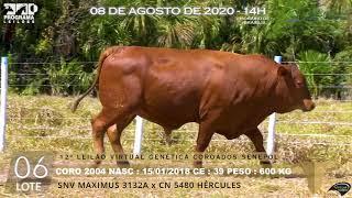 Coro 2004 b4 fiv