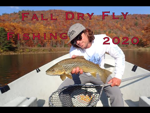 October Dry Fly Fishing 2020