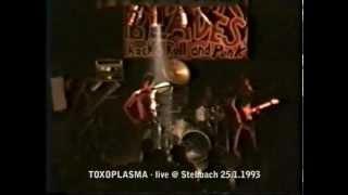 TOXOPLASMA: Fönlied  (live 23.1.1993, Deutschpunk in Stebbach)