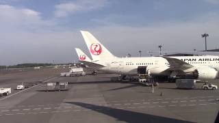Flying to Japan, AMAZING ramen, and SUSHI GO ROUND!!! American Airlines operated by JAL