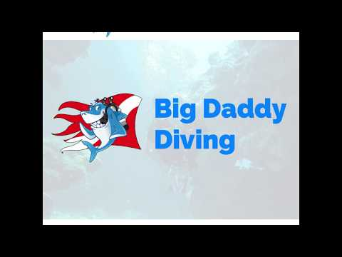 Big Daddy Diving in Cozumel is the Place to Go for Fun in Mexico