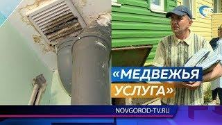 Семьи из Боровичей вынуждены доказывать, что из аварийного дома их переселили в такой же опасный