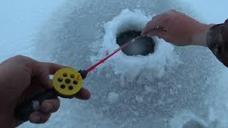 Обстановка с рыбалкой в астрахани
