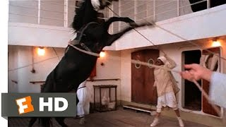 The Black Stallion (1/11) Movie CLIP - Alec Meets the Stallion (1979) HD