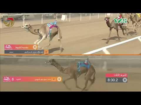 مهرجان ولي العهد- ميدان الطائف - ثنايا 20-9-2018 م - ش3 غنادير لـ موسى عبدالعزيز الموسى 11:01:37