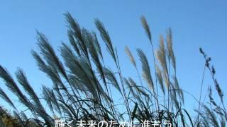 ナオト・インティライミ-Brave[歌詞付き]