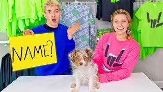 Choosing a Name for Our Baby Puppy!! (Sis VS Bro Challenge - You Decide)